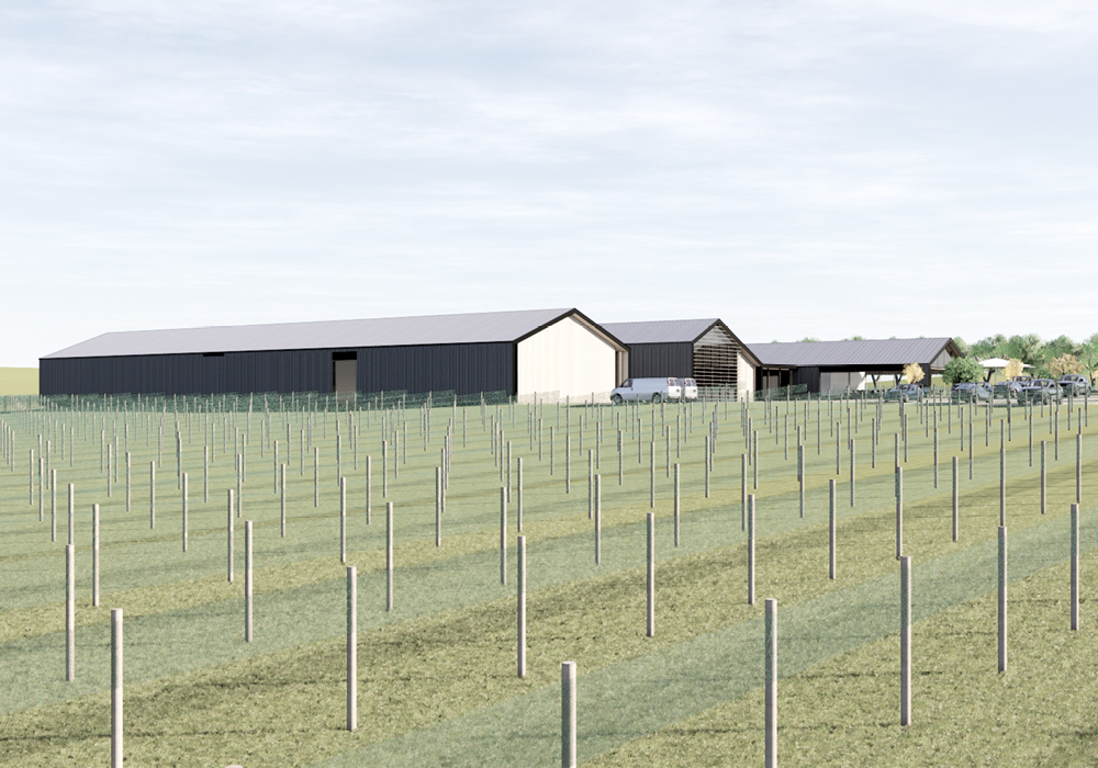 Winery Tourism Concept 4