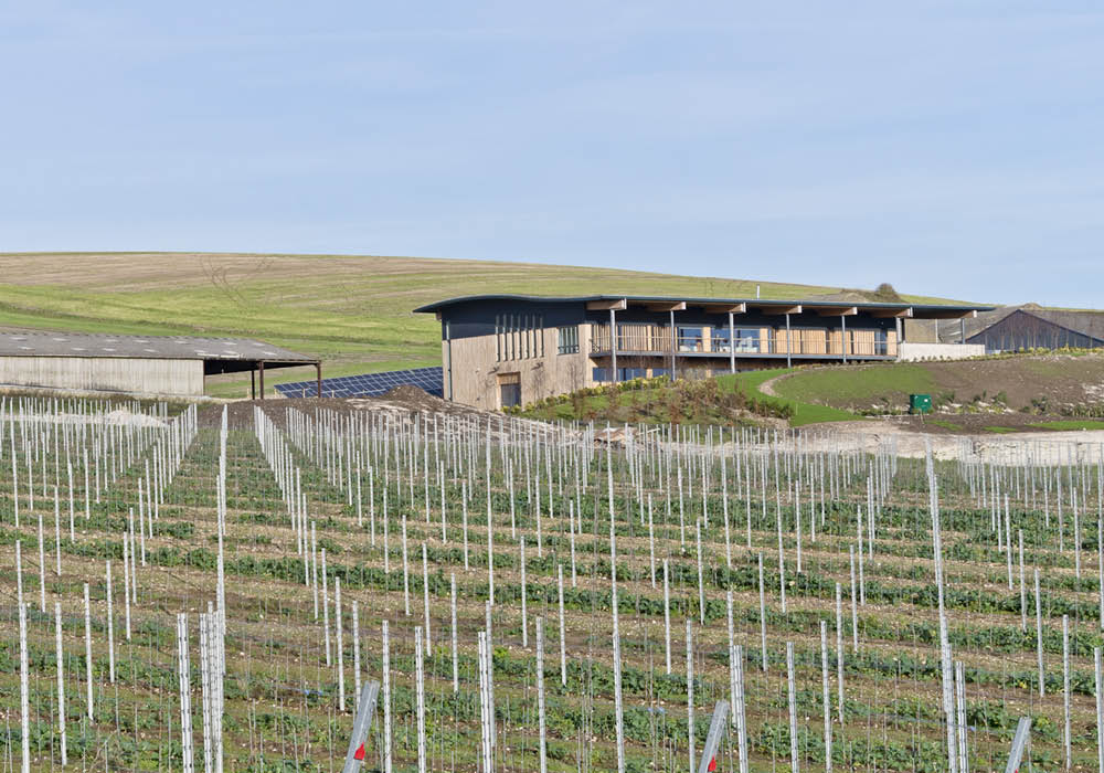 Designcubed Architects Rathfinny Winery Adj