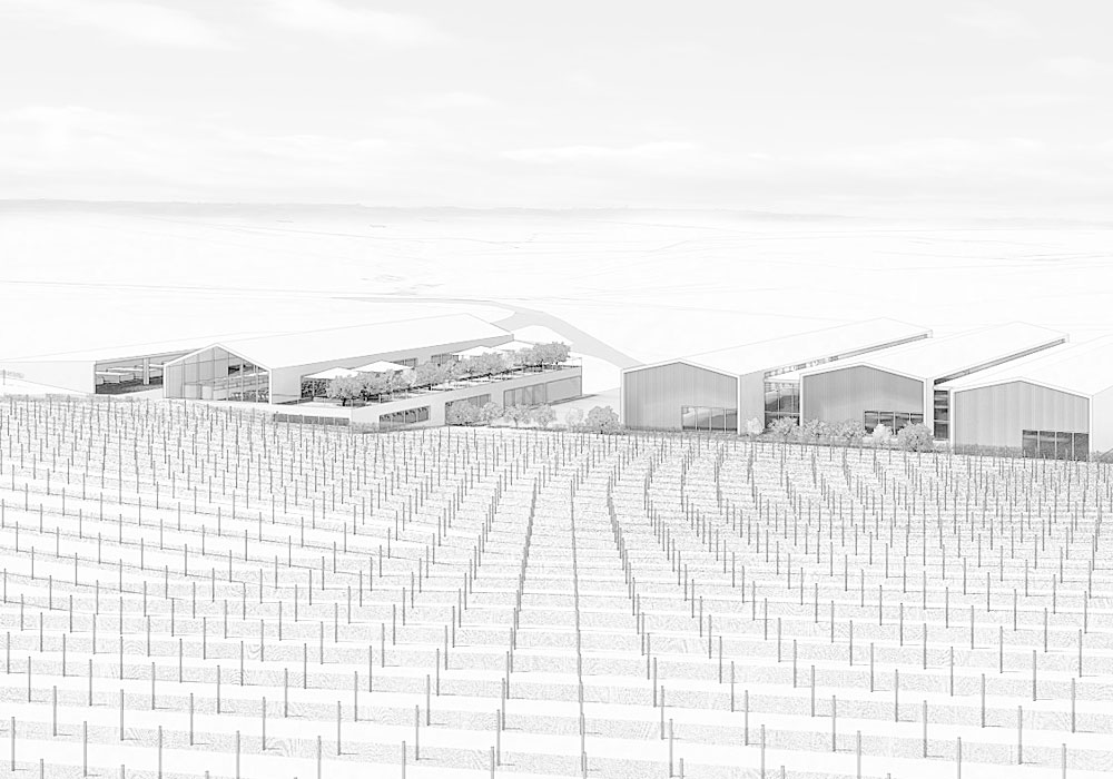 Designcubed Architects Winery Feasibility 1